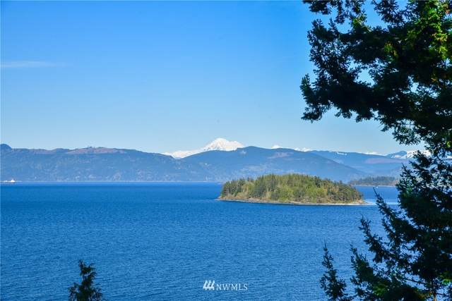 4667 Guemes Island Road, Anacortes, WA 98221 (#1759052) :: M4 Real Estate Group
