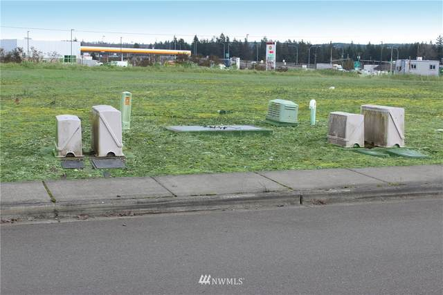 19602 Vision Drive SW, Rochester, WA 98579 (#1759289) :: Better Homes and Gardens Real Estate McKenzie Group