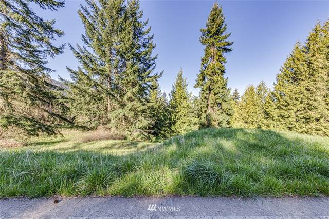 9999 Fox Hollow, Lot 1 Road, Sequim, WA 98382 (#1759386) :: Tribeca NW Real Estate