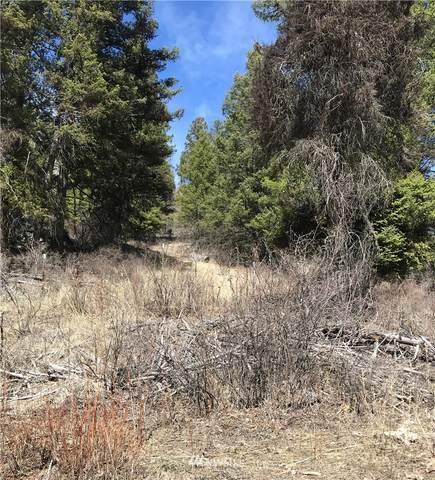 99 O'brien Creek Road, Republic, WA 99166 (MLS #1759598) :: Nick McLean Real Estate Group