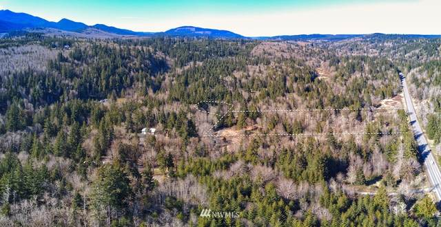292000 Sr 101 Highway, Quilcene, WA 98376 (#1759615) :: Becky Barrick & Associates, Keller Williams Realty