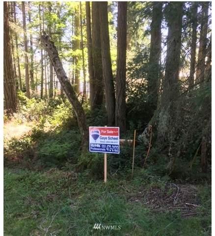 10408 Matthews Way, Anderson Island, WA 98303 (#1759727) :: Better Homes and Gardens Real Estate McKenzie Group