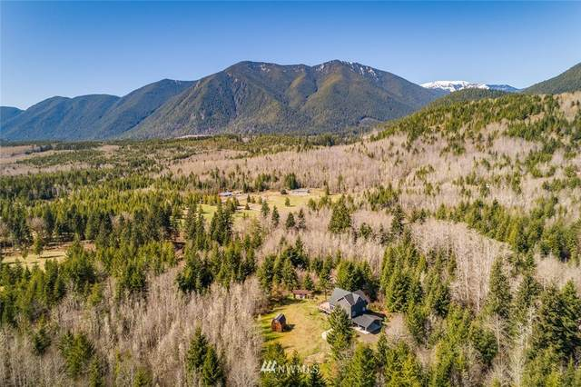 625 Ripley Creek Road, Quilcene, WA 98376 (#1760024) :: Becky Barrick & Associates, Keller Williams Realty