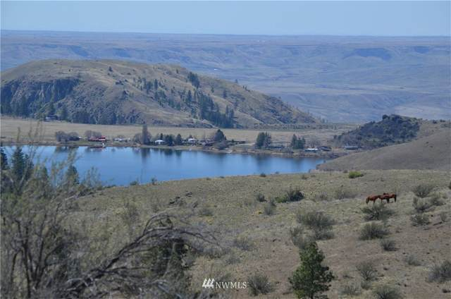 0 Off Buffalo Lake Road, Coulee Dam, WA 99116 (MLS #1760100) :: Nick McLean Real Estate Group
