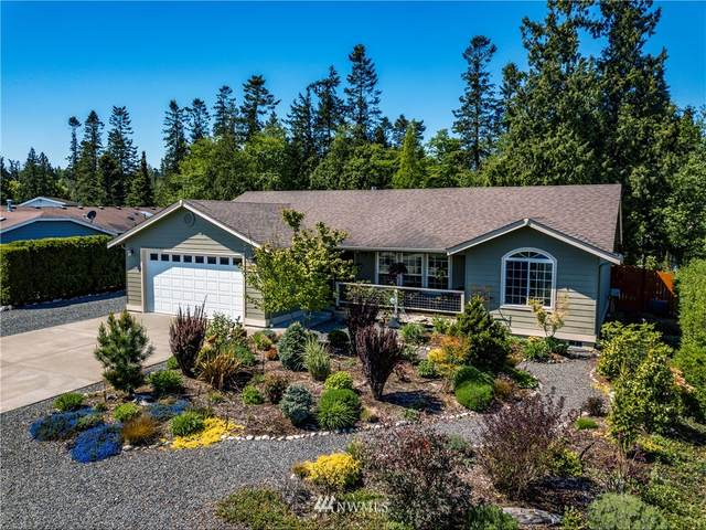 8195 Comox Road, Blaine, WA 98230 (#1760189) :: Lucas Pinto Real Estate Group