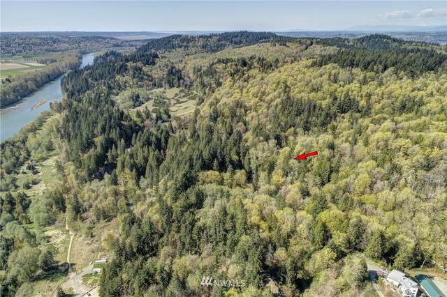 17810 142nd Avenue SE, Snohomish, WA 98290 (#1760365) :: NW Home Experts
