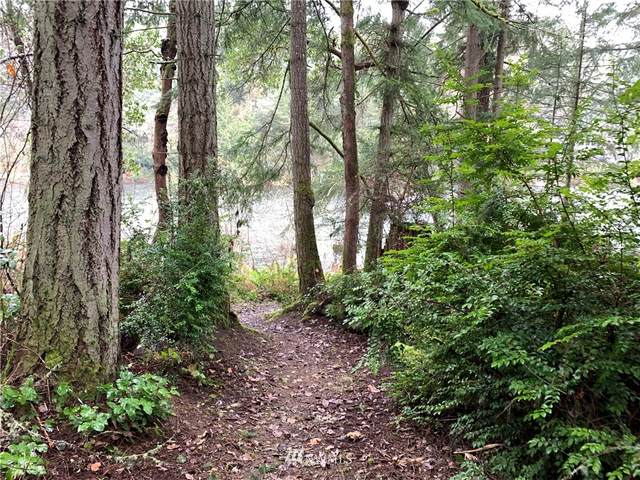 10519 Narrows Drive, Anderson Island, WA 98303 (MLS #1760611) :: Community Real Estate Group