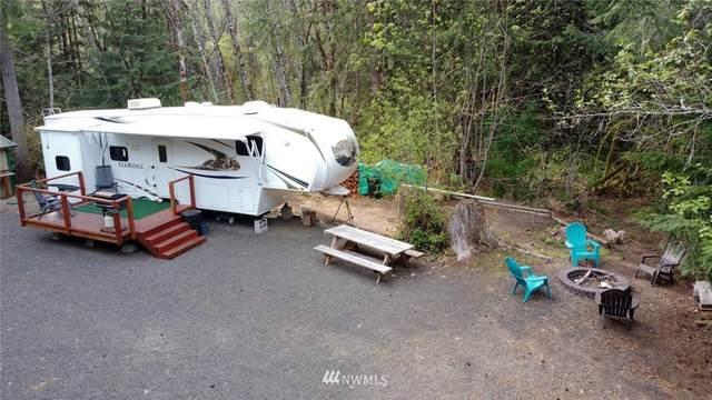 110 N Mountain View Drive, Hoodsport, WA 98548 (#1760636) :: M4 Real Estate Group
