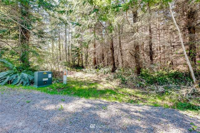 1234 Southview Drive, Port Angeles, WA 98363 (#1760647) :: Icon Real Estate Group