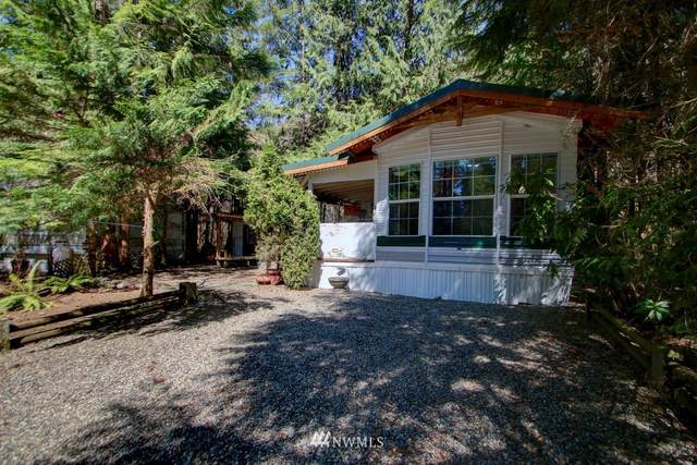 102 Big River Boulevard W, Deming, WA 98244 (#1760649) :: Ben Kinney Real Estate Team