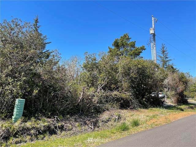 376 N Razor Clam Drive SW, Ocean Shores, WA 98569 (#1761044) :: McAuley Homes