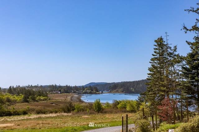 42 Reed Bay Road, Decatur Island, WA 98221 (#1761054) :: Provost Team | Coldwell Banker Walla Walla