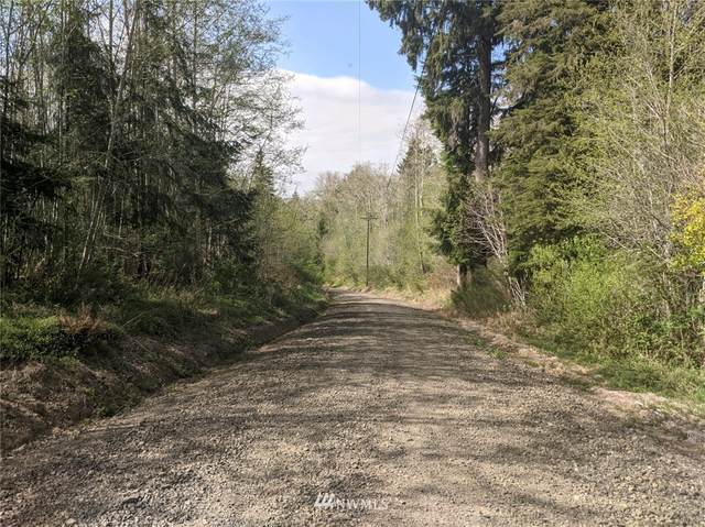 360 Mudgett Mountain Road, Montesano, WA 98563 (#1762323) :: Provost Team | Coldwell Banker Walla Walla