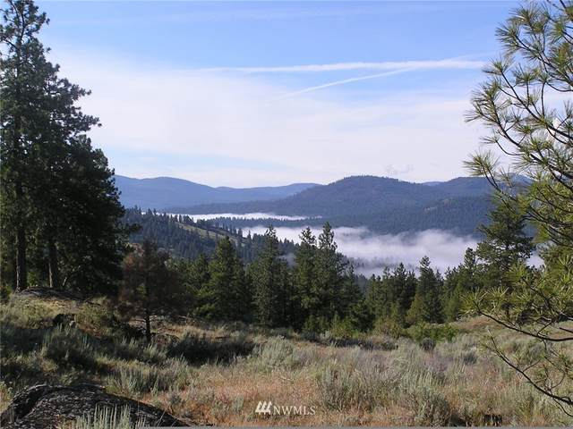 110 Aspen Way, Tonasket, WA 98855 (#1762416) :: Northwest Home Team Realty, LLC