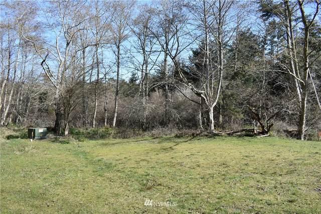 14 Pond Place, San Juan Island, WA 98250 (#1762417) :: M4 Real Estate Group