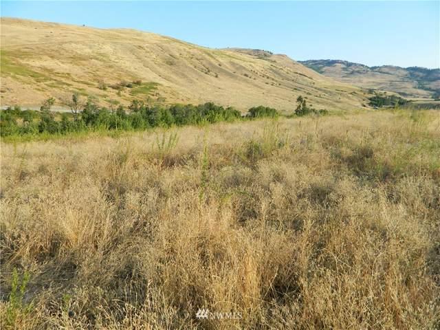 111 Tbd Pine Creek Rd, Tonasket, WA 98855 (#1762453) :: Provost Team | Coldwell Banker Walla Walla