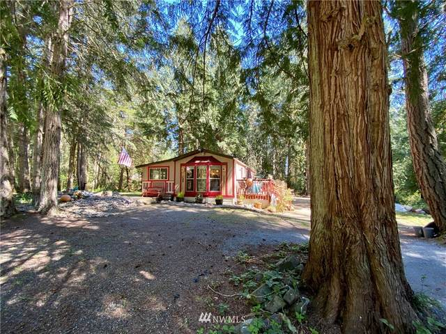 8615 Davenport Road, Anderson Island, WA 98303 (#1762844) :: Better Homes and Gardens Real Estate McKenzie Group