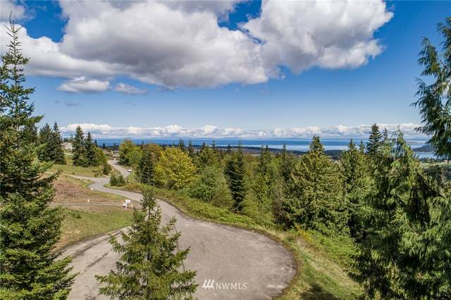 0 High View Way, Sequim, WA 98382 (#1763011) :: Tribeca NW Real Estate