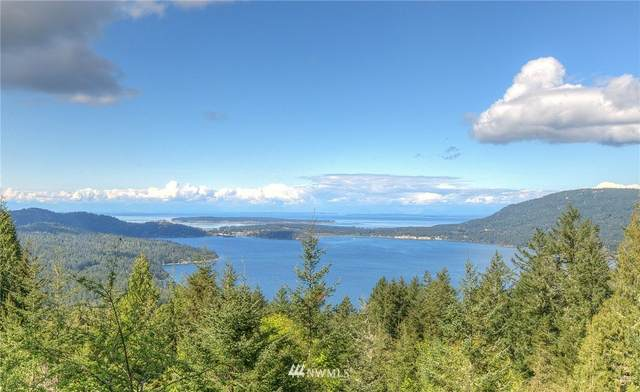 749 Spring Hill Road, Orcas Island, WA 98245 (#1763073) :: Tribeca NW Real Estate
