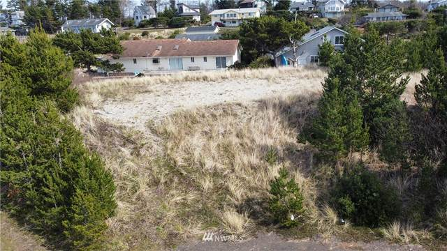 811 346 Place, Ocean Park, WA 98640 (#1763114) :: Alchemy Real Estate