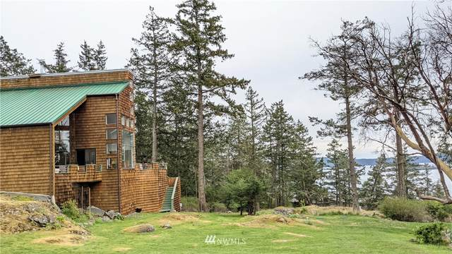 23 Park Place, Orcas Island, WA 98243 (#1763151) :: Icon Real Estate Group