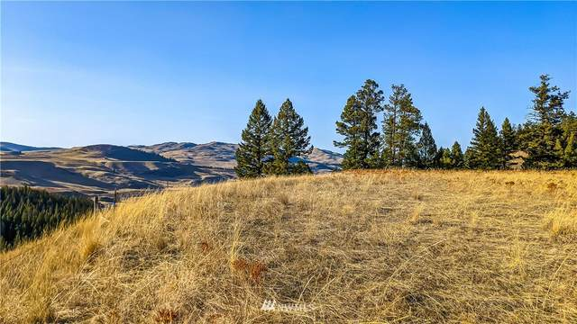 13 Chesaw Rd, Oroville, WA 98844 (#1763175) :: Northwest Home Team Realty, LLC