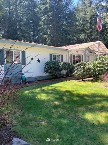 127 E 127 Mt. Rainier Drive E, Packwood, WA 98361 (#1763190) :: Icon Real Estate Group