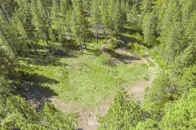 222 Timber Tiger Road, Cle Elum, WA 98922 (#1763356) :: Northwest Home Team Realty, LLC