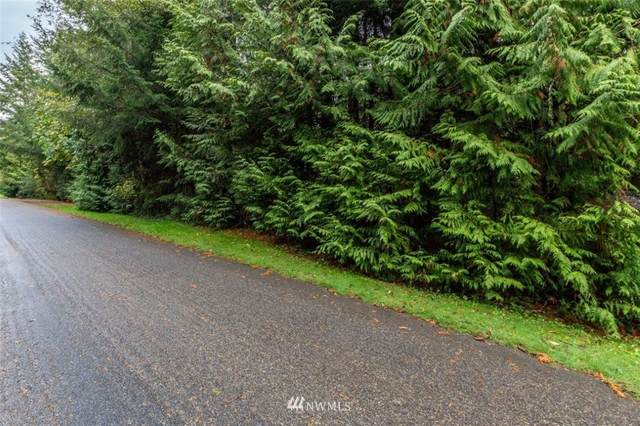 0 Goliah Lane, Port Ludlow, WA 98365 (#1763365) :: TRI STAR Team | RE/MAX NW