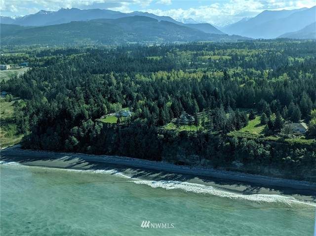 95 S Breakerpoint Place, Port Angeles, WA 98363 (#1763995) :: Alchemy Real Estate