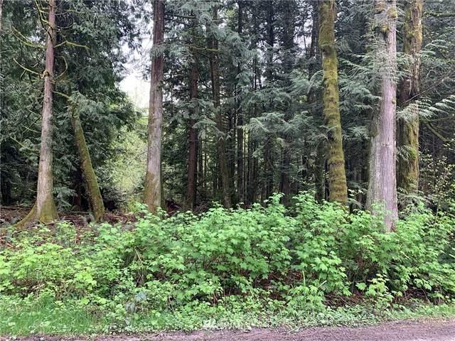 11602 Panorama Drive, Sedro Woolley, WA 98284 (#1764328) :: Keller Williams Western Realty