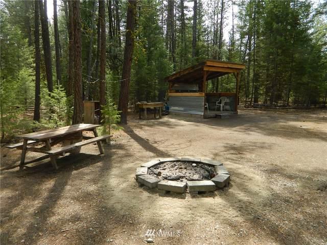 111 Squirrel Road, Tonasket, WA 98855 (#1764640) :: Northwest Home Team Realty, LLC