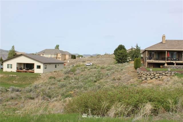 302 Desert Canyon Boulevard, Orondo, WA 98843 (#1765129) :: Northwest Home Team Realty, LLC