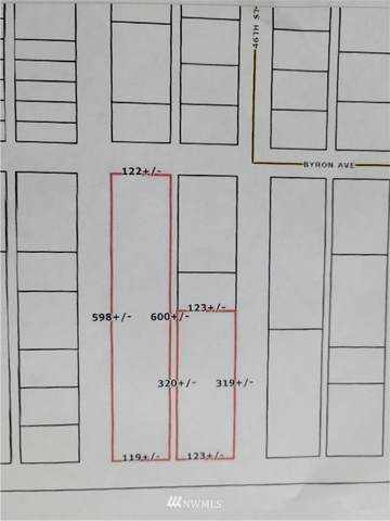 0 46th Street, Bellingham, WA 98229 (#1765292) :: Northwest Home Team Realty, LLC