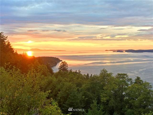 908 Raccoon Point Road, Orcas Island, WA 98245 (#1765293) :: Tribeca NW Real Estate