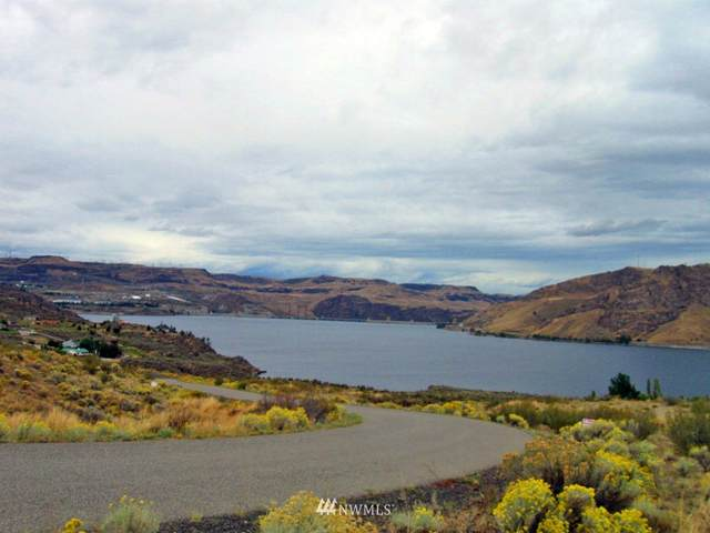 45750 Fdr Estates Drive N, Grand Coulee, WA 99133 (#1765688) :: Northwest Home Team Realty, LLC