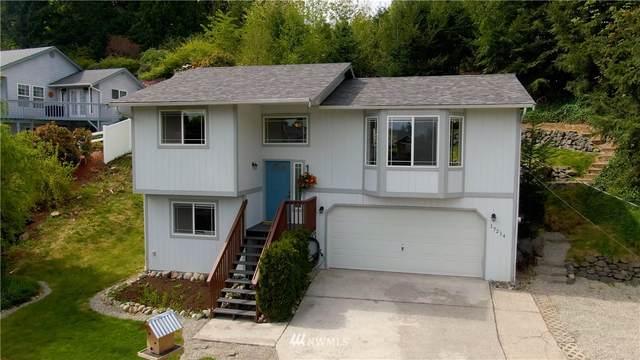 17214 E 33rd Street Ct E, Lake Tapps, WA 98391 (#1766243) :: Tribeca NW Real Estate