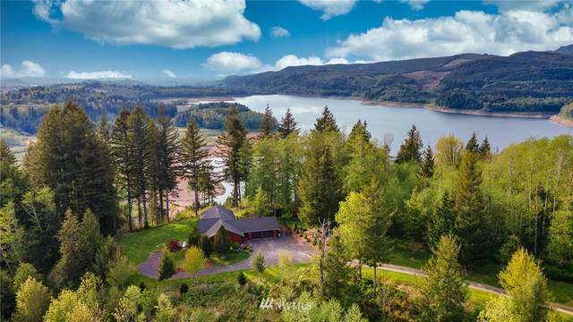 140 Sunset Ridge Lane, Mossyrock, WA 98564 (#1766287) :: Tribeca NW Real Estate