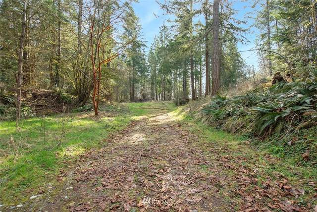 16610 104th Street Court NW, Gig Harbor, WA 98329 (#1766322) :: Mike & Sandi Nelson Real Estate