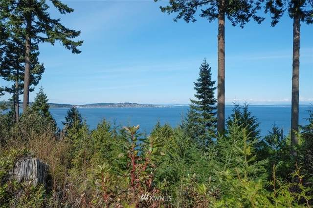 261 Sailview Drive #9, Port Townsend, WA 98368 (MLS #1766441) :: Community Real Estate Group