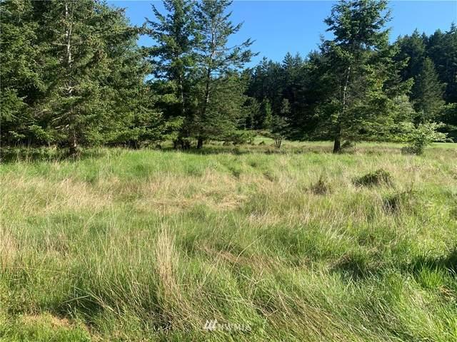 25 Stuart Island Park Tie Down, Stuart Island, WA 98250 (#1766528) :: Lucas Pinto Real Estate Group