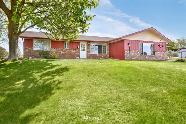 101 Leininger Drive, Yakima, WA 98901 (#1767013) :: Provost Team | Coldwell Banker Walla Walla