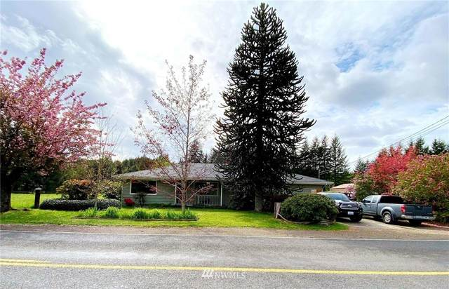 369 Cloquallum Road, Elma, WA 98541 (#1767033) :: Icon Real Estate Group