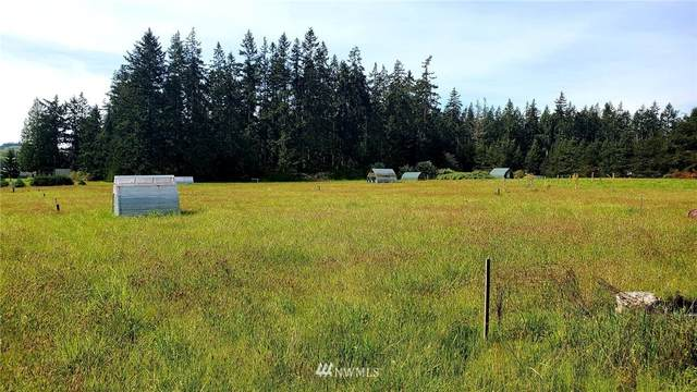4085 Monkey Hill Road, Oak Harbor, WA 98277 (#1767642) :: Keller Williams Western Realty