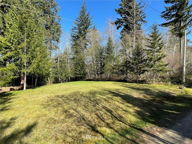 29 Tyee Place (Tr 29) Place, Elma, WA 98584 (MLS #1768619) :: Community Real Estate Group