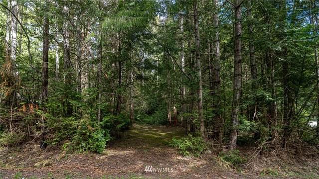 0 Trailwood Drive E, Brinnon, WA 98320 (#1768781) :: Beach & Blvd Real Estate Group