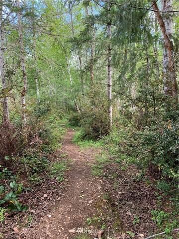 180 E Country Bumpkin Lane, Shelton, WA 98584 (MLS #1768813) :: Community Real Estate Group