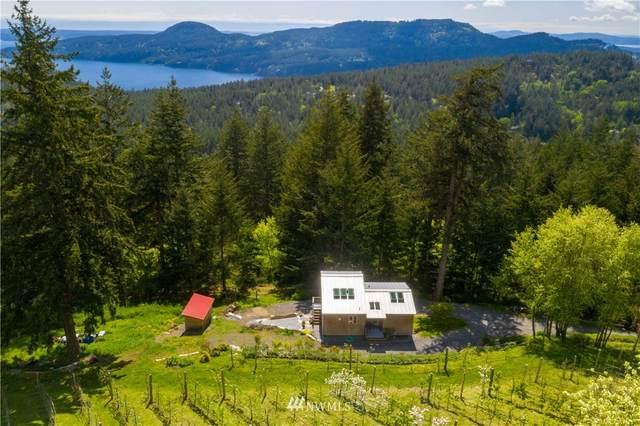652 Vusario Lane, Orcas Island, WA 98245 (#1768978) :: Alchemy Real Estate