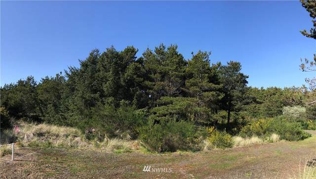 409 N Gold Street, Westport, WA 98595 (#1769156) :: Icon Real Estate Group