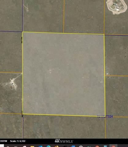 0 Parcel 161803000, Soap Lake, WA 98851 (#1769350) :: Icon Real Estate Group